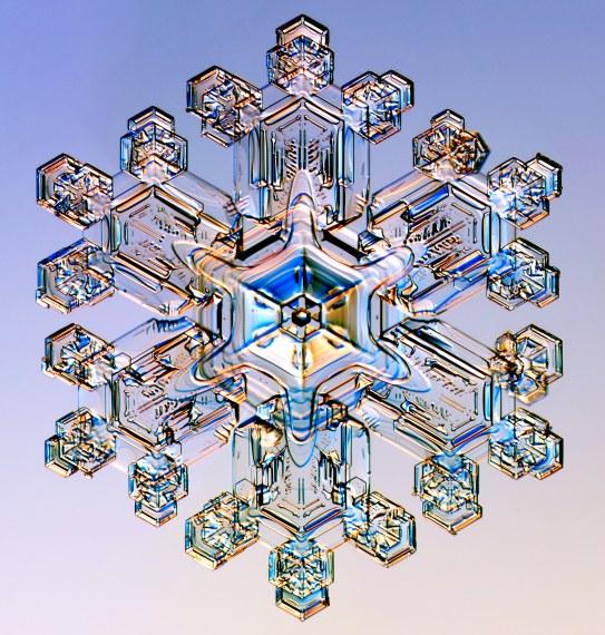 Stellar Dendrites snowflakes